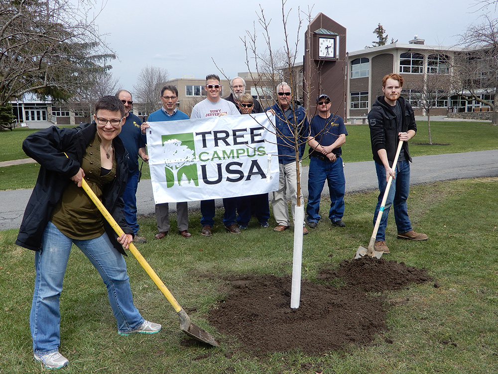 Tree Campus USA members planting tree