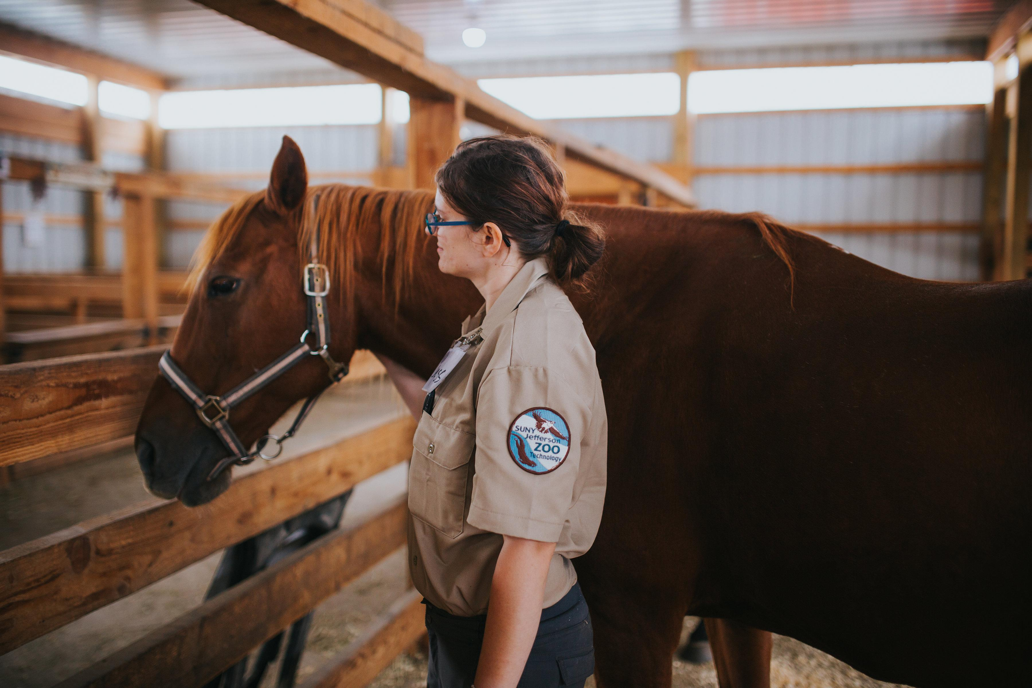 Student leading a horse